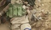 فيديو يوضح الفرق بين أبناء المملكة وأتباع خامنئي في المواجهات العسكرية