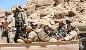الجيش اليمني يأسر 100 عنصر حوثي.. وتوقعات بشن معركة في صنعاء
