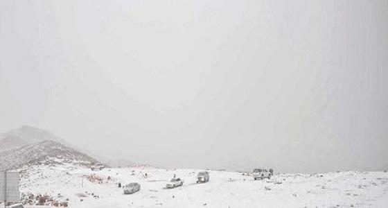 أتربة ورياح شمالية.. تفاصيل 3 أيام من التقلبات المناخية في المملكة