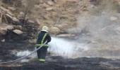 بالصور.. السيطرة على حريق في مزرعة بشفا الطائف