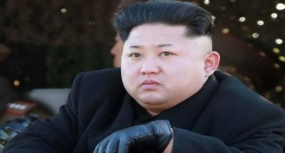 اتفاق 20 دولة على اتخاذ خطوات بفرض عقوبات بشأن كوريا الشمالية