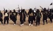 داعش تزرع مفخخات بإحدى أسواق طرابلس