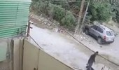 بالفيديو.. شاب يعتدي على عجوز في الشارع بطريقة بشعة