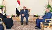 عضو مجلس الوزراء بمقر الرئاسة المصرية اليوم