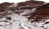 بالفيديو والصور.. الثلوج تغطي جبل اللوز في تبوك