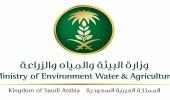 """"""" البيئة """" تعتزم تصريف 40 مليون متر مكعب من سد حلي لري مزارع القنفذة"""