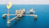 مصر: وقف استيراد الغاز المسال يونيو القادم