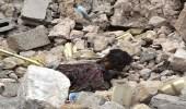 بالصور.. العثور على جثث داعشية تفوح رائحتها في الموصل