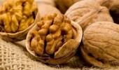 دراسة: الفول السوداني مفيد لمرضى الربو