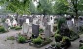 كلب يحرس قبر صاحبه لمدة 12عاما بعد وفاته