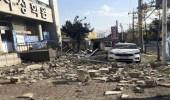 كوريا الجنوبية تتعرض لزلزال بقوة 4,8 ريختر