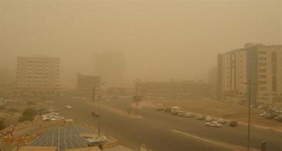 %86 من عوالق الهواء غبار وكبريتات.. واقتراحات لتحسين جودته
