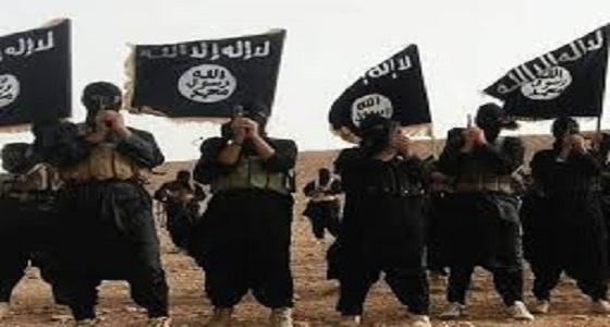 من العلم للتطرف.. رحلة شاب تحول لإرهابي مجهول
