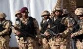 الجيش يحبط محاولة هجوم للميلشيات الحوثية بالقرب من نجران