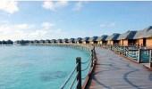 """السياحة: ستصبح """" فرسان """" أحد أهم الوجهات السياحية على مستوى المملكة"""