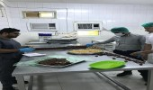 بالصور.. إغلاق 4 منشآت غذائية مخالفة في جازان