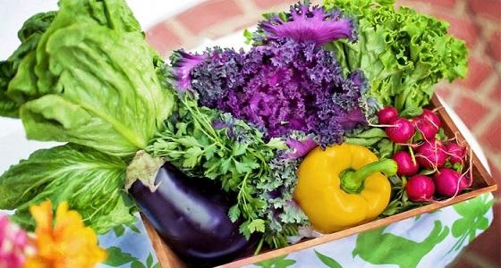 4 أطعمة مفيدة لأصحاب الضغط المرتفع