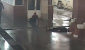 """بالفيديو.. قتل شاب لرفضه غسيل سيارة """" بي إم دبليو """""""