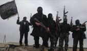 الأمم المتحدة: تنظيم القاعدة لا يزال صامدا بشكل ملفت
