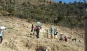 بالصور.. مركز الملك سلمان للإغاثة يوزع 5 آلاف سلة غذائية في تعز