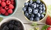 السبب وراء استخدام التوت وورقه في علاج مرض السكر