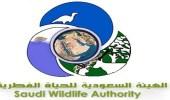 إطلاق مبادرة للتوسع في المحميات الطبيعية بالمملكة