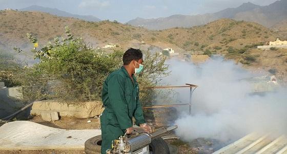 بالصور.. فرق الرش تواصل مكافحة الأوبئة والحشرات داخل المنازل بهروب