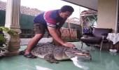 بالصور.. عائلة تربي تمساحا رغم وزنه المرعب