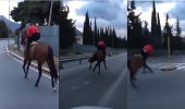 بالفيديو.. سقوط مروع لفارس من أعلى حصانه