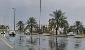 المسند: المملكة خالية من أي حالة مطرية قوية لمدة 5 أيام