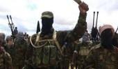 مافيا إيطالية تبيع الترامادول إلى التنظيمات الإرهابية
