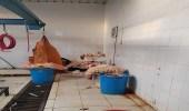 بالصور.. أمانة نجران تضبط مخالفات صحية في أحد نقاط الذبح