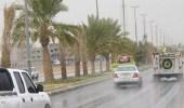 أمطار متوسطة على محافظة طريف
