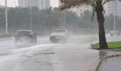 هطول أمطار بدرجات متفاوتة في الطائف