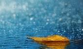 أعراض إذا شعرت بها عند سقوط الأمطار عليك مراجعة الطوارئ