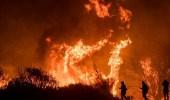 """شركات التأمين تتكبد 11.79 مليار دولار جراء حرائق """" كاليفورنيا """""""