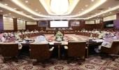 اللجنة الوطنية الدائمة لمواجهة الكوارث البحرية تعقد اجتماعها السابع