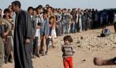 عودة أكثر من 1000 نازح إلى قضاء الحويجة بكركوك