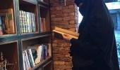 شابة تفتح أول مقهى للقراءة وتقديم القهوة العربية بالخبر