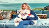 فنانة شهيرة تستنسخ كلبتها الميتة بـ 100 ألف دولار