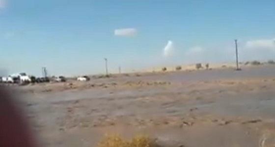 بالفيديو.. سائق متهور ينجو بأعجوبة بعد انقلاب مركبته وسط السيول