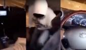"""بالفيديو .. """" شيلة """" تدفع سائقين للرجوع إلى المقاعد الخلفية أثناء القيادة"""