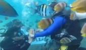بالفيديو.. مفاجأة غير متوقعة لسيدة تغوص تحت الماء لأول مرة
