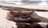 بالفيديو.. تصدع أرضي بطول 28 كلم شمال الرياض