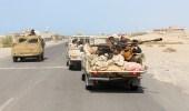 الإرياني: عادت حيس وسنطهر بقية المناطق من الحوثيين قريبًا