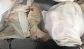 بالصور.. روائح كريهة تنبعث من ملاحم أحد رفيدة نتيجة التخزين السيء