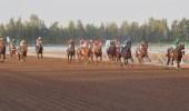 نادي الفروسية يقيم حفل سباقه الـ 58 السبت المقبل