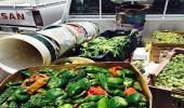 بالفيديو.. ضبط موقعًا مخالفًا لبيع الخضروات في صناعية حي الشفا