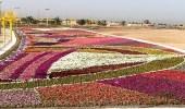 """استتعدادات """" ينبع """" لإنطلاق مهرجان الزهور الـ12"""