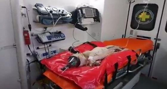بالفيديو.. رجل يتجرد من الرحمة ويلقي بكلب من النافذة